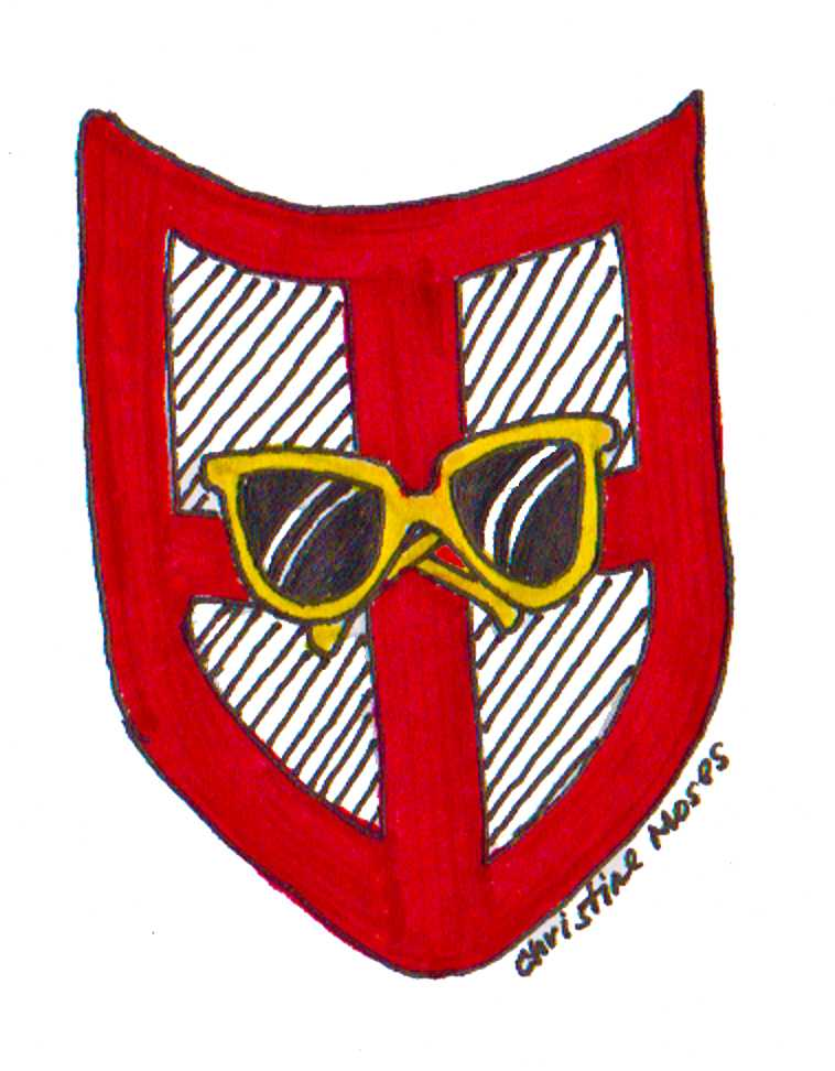 Sunglass shield