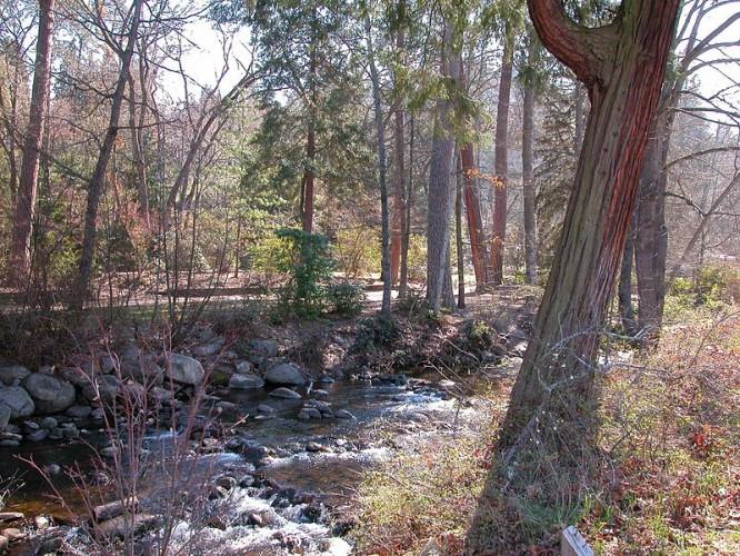 800px-Demi-Lithia-Park-Ashland-Creek-20050305